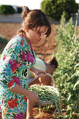 Argiro Barbarigou harvesting her island garden on native Paros, Greece