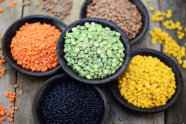 Pulses - An alternative source of protein