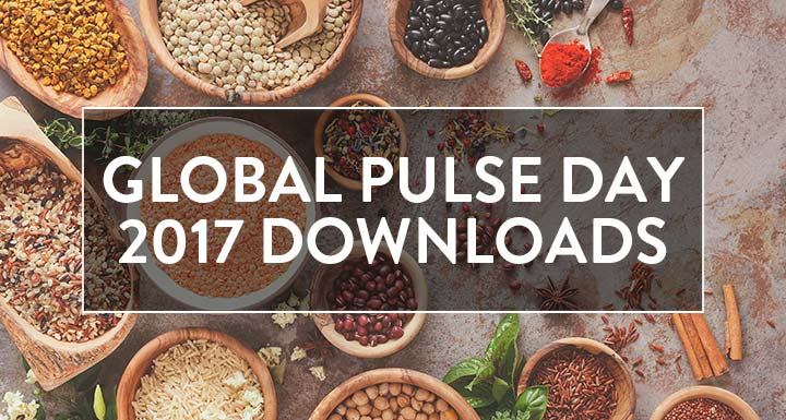Global Pulse Day Downloads