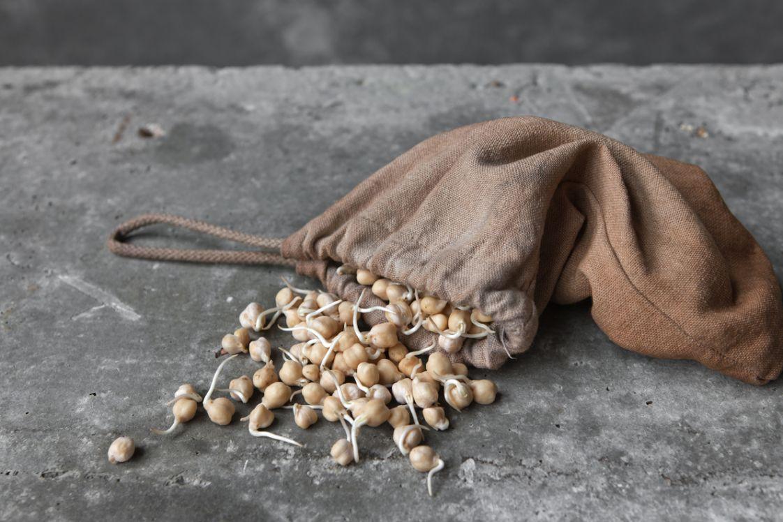 Sprouted Dirt(y) Kabuli Chickpea Hommus & Instant Flatbreads