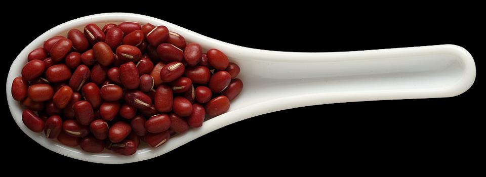 pulses adzuki beans definition common