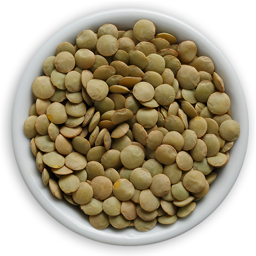 What are Pulses? - Pulses