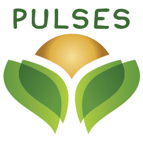 The Pulse Brand