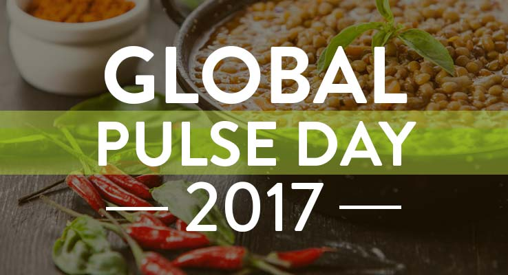 Global Pulse Day 2017