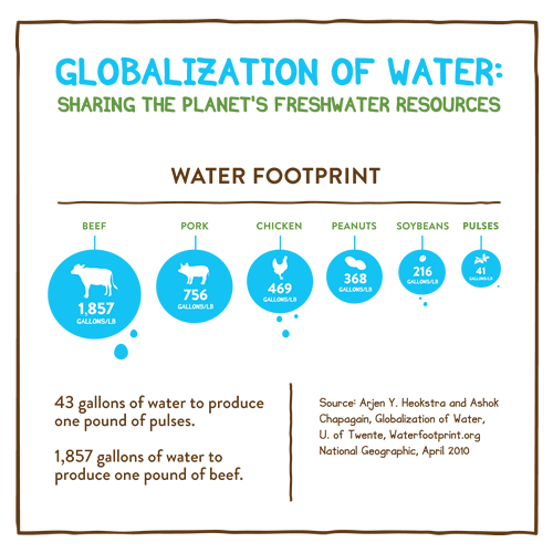The Water Footprint of Pulse Production