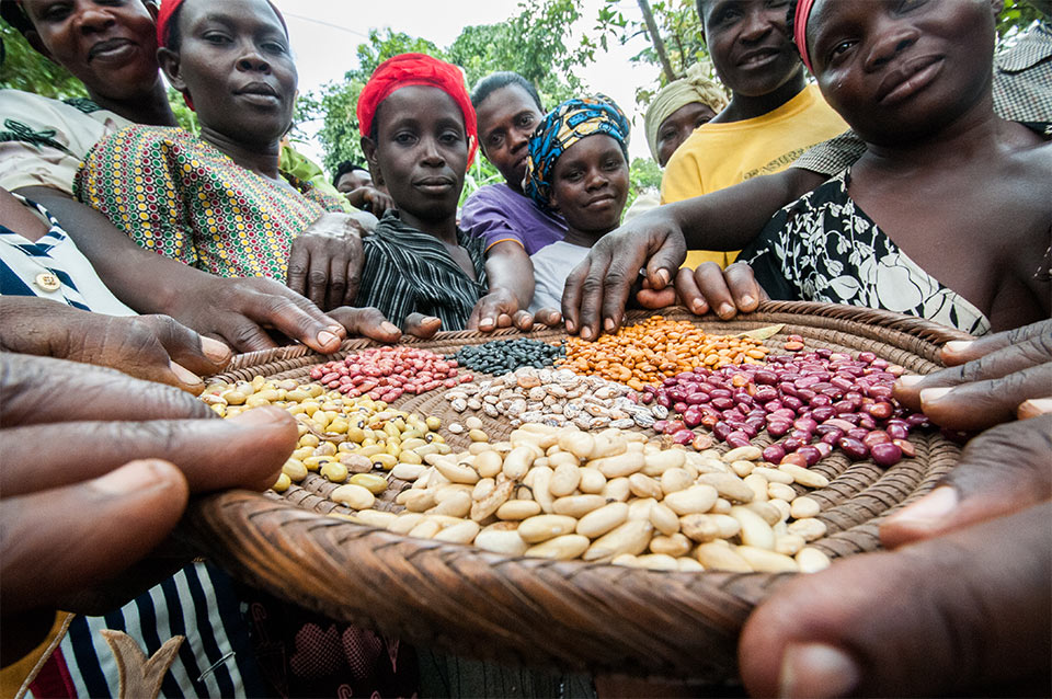 Ugandan people standing around a wicker plate holding multiple types of beans