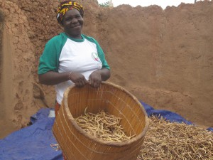 Niébé is a local form of cowpea largely farmed by women in West Africa. Copyright: WFP/Eliza Warren-Shriner